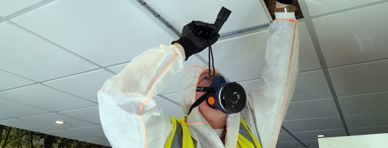 An asbestos surveyor looking in a ceiling voice for asbestos